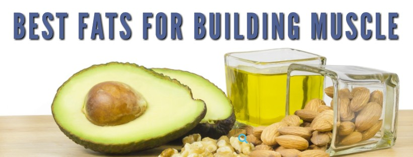Best Fats for Building Muscle